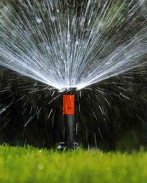 Система автоматического полива воды