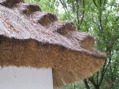 Крыша из соломы
